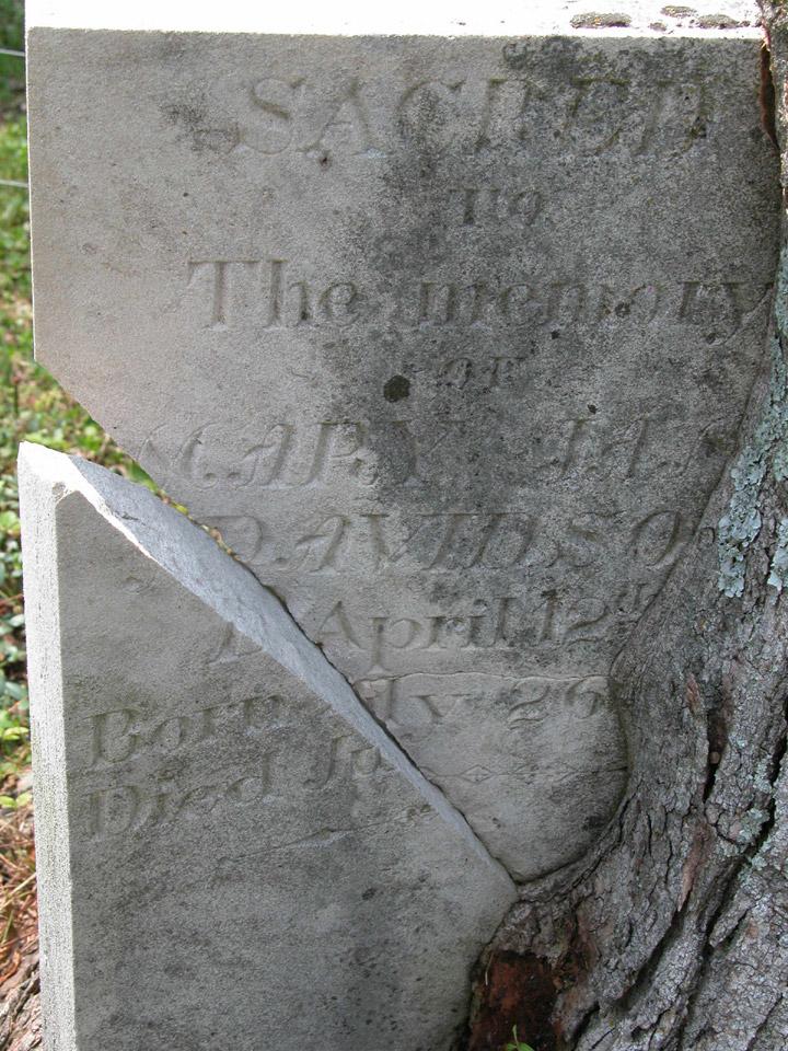 Everett Cemetery, Barren Co., KY